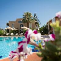 Hotel Peli (Kissamos, Kastelli, Crete) Pool 09